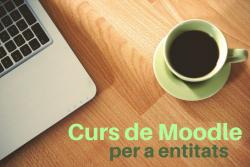 curs_moodle-250x167